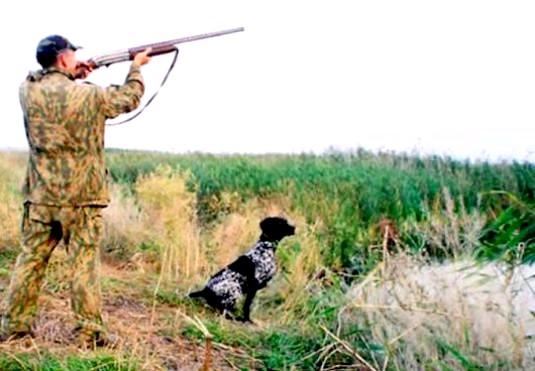 Фото - Де полювати?