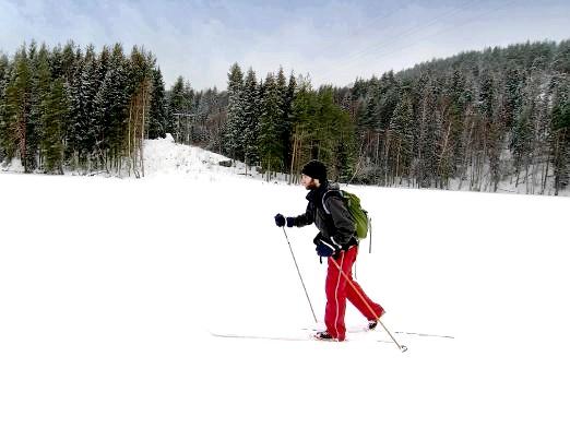 Фото - Де покататися на лижах в москві?