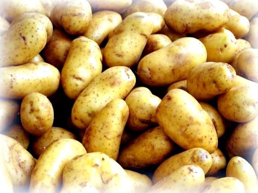 Фото - До чого сниться картопля?