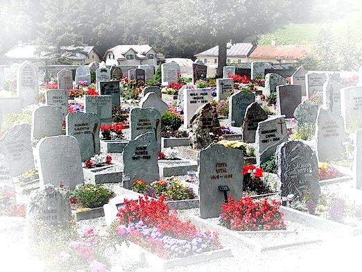 Фото - До чого сниться цвинтарі?