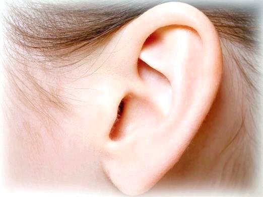 Фото - До чого сняться вуха?