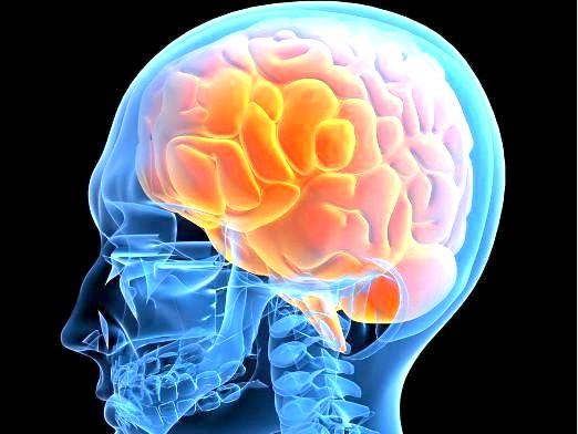 Фото - Як лікувати мозок?
