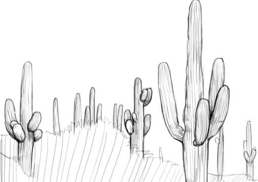 Фото - Як намалювати кактус?