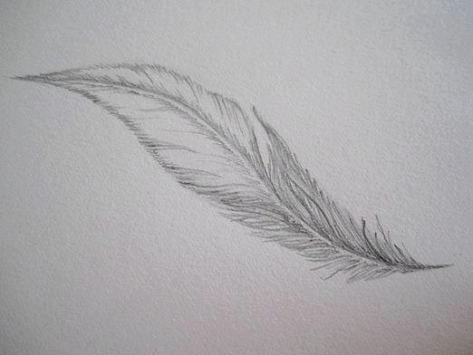 Фото - Як намалювати перо?