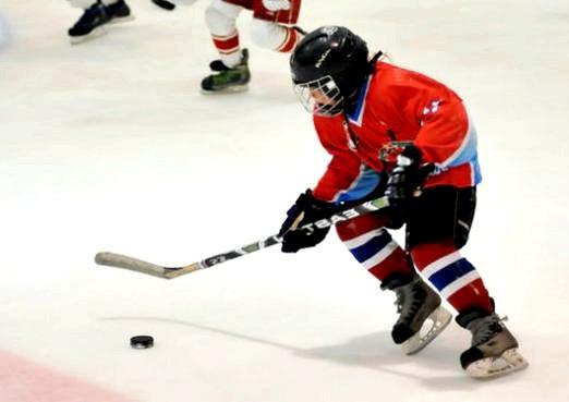 Фото - Як навчитися грати в хокей?