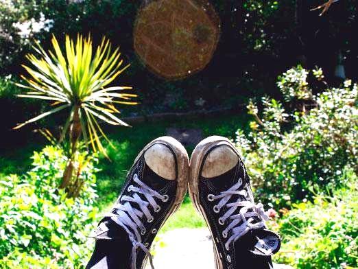 Фото - Як почистити взуття?