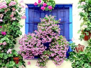 Фото - Прикраса будинку