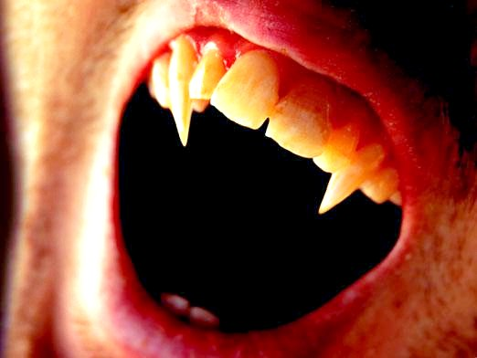 Фото - Як стати вампіром?