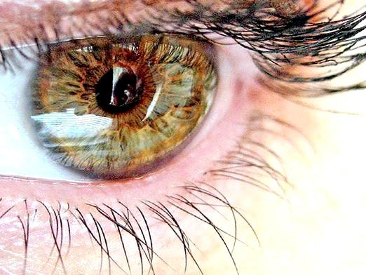 Фото - Як поліпшити зір?