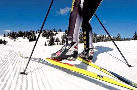 Фото - Як вибирати бігові лижі?