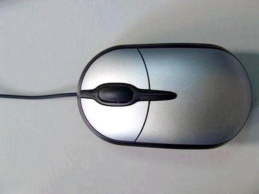 Фото - Яка мишка краще?