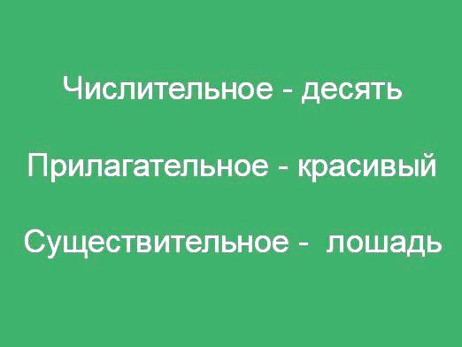 Фото - Які частини мови бувають?