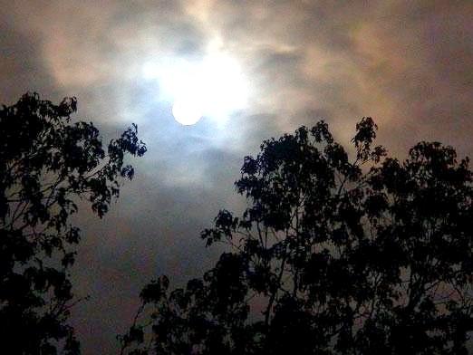 Фото - Чому місяць світить?