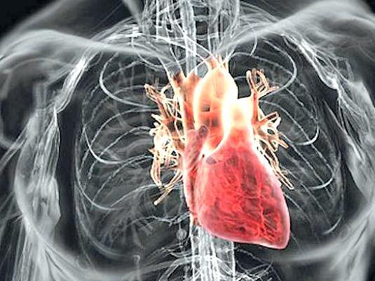 Фото - З якого боку серце?