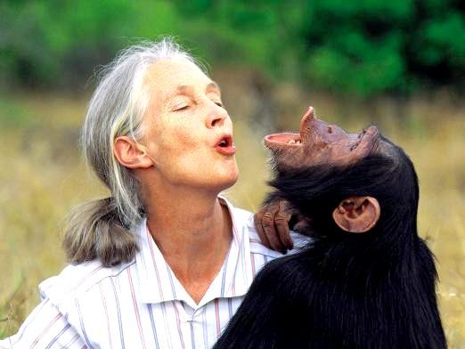 Фото - Чим відрізняється людина від тварини?