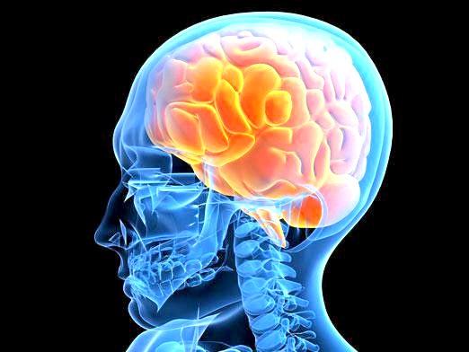 Фото - Що робити при струсі мозку?