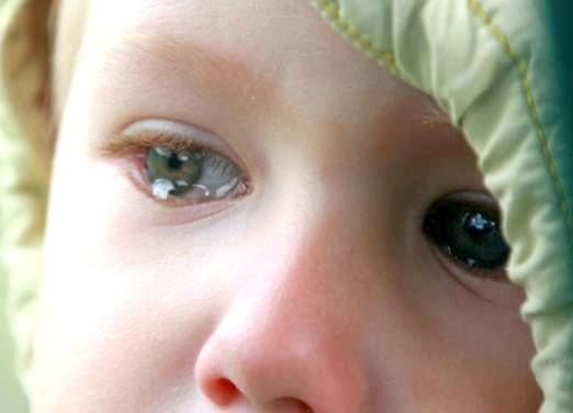 Фото - Що таке плач?