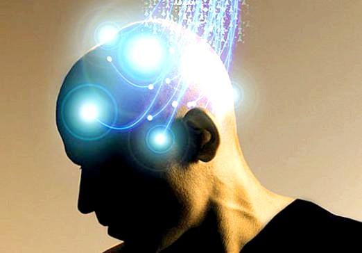 Фото - Як поліпшити роботу мозку?