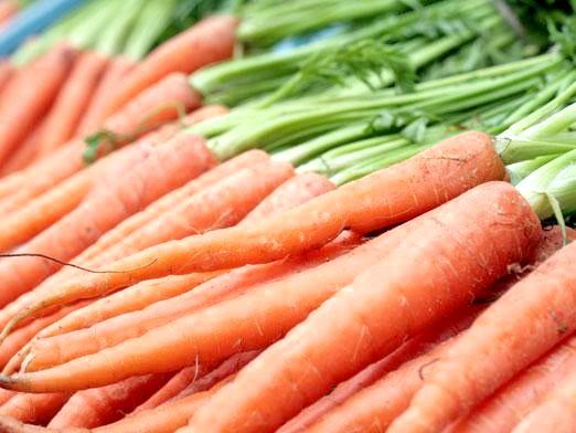 Фото - Коли садити моркву?