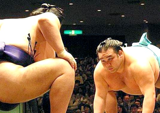 Фото - Скільки важить борець сумо?