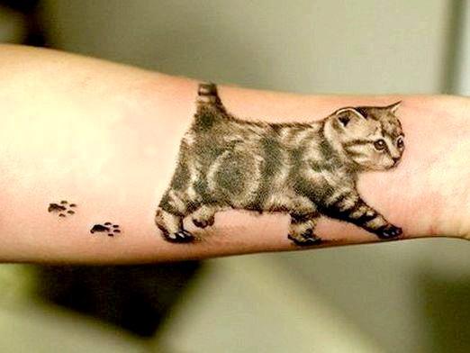 Фото - Що означає тату кішка?