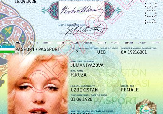 Фото - Що таке біометричний паспорт?