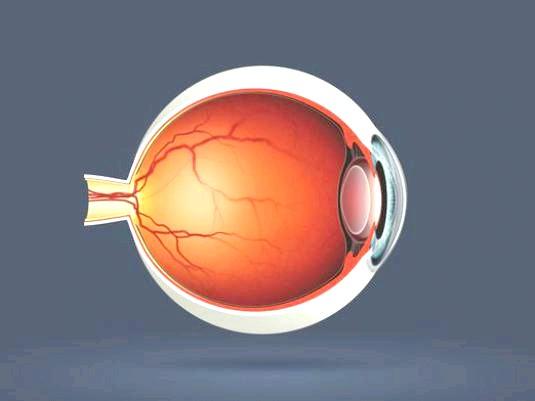 Фото - Що таке очей?