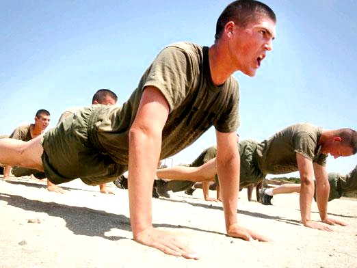 Фото - Які м'язи працюють при віджиманні?