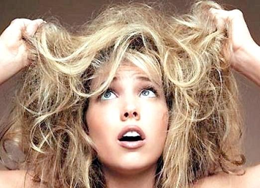 Фото - Сухе волосся, що робити?