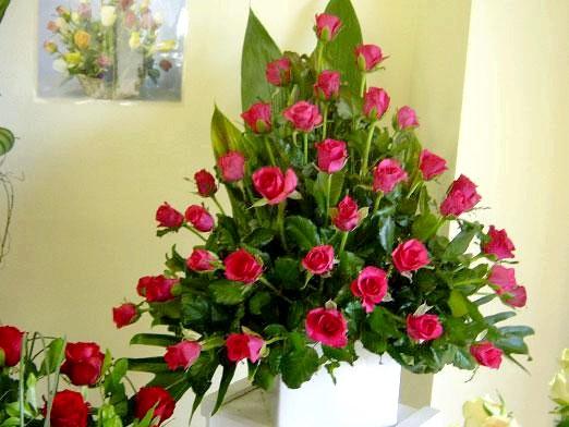 Фото - Що робити, щоб троянди довше стояли?