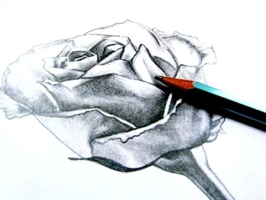 Фото - Що намалювати олівцем?