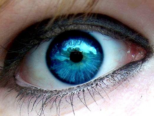 Фото - Що означає колір очей?