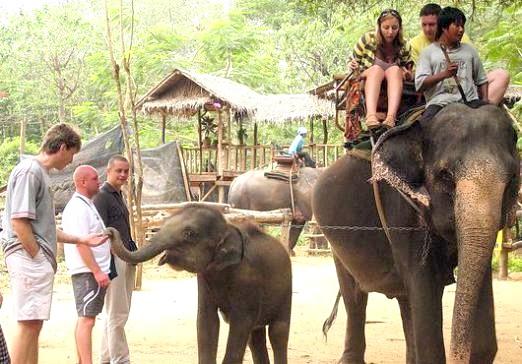 Фото - Що подивитися в Тайланді?