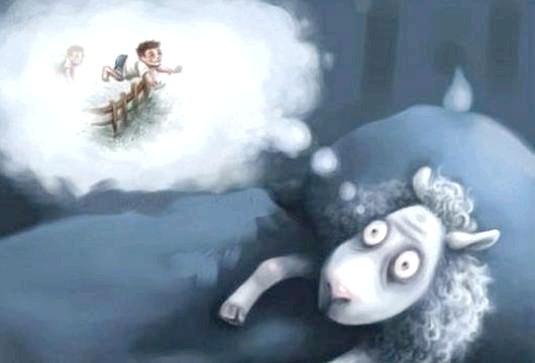 Фото - Що вважають вівці, щоб заснути?