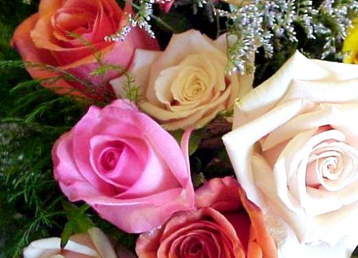 Фото - Що символізують квіти?