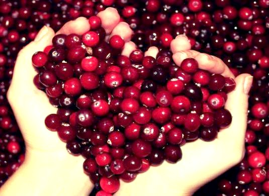 Фото - Що таке ягода?