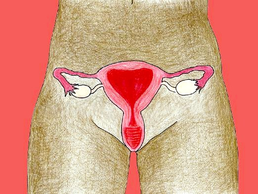 Фото - Що таке шийка матки?